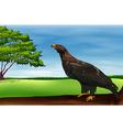 A big bird vector image
