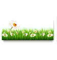 Nature banners with colorful spring flowers vector image