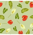 Seamless pattern with flowers spathiphyllum and vector image