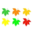 A set of leaves of chestnut vector image