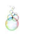 rainbow soap bubble on a white background vector image