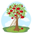 Apple tree and wooden staircase vector image