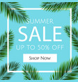 sale banner with palm trees vector image