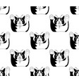 cute black and white cat attack on white vector image