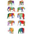 set of colorful elephants vector image