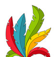 Colorful feathers on white background vector image