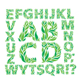Alphabet green leaves vector image vector image