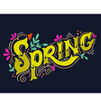 Spring Hand drawn vintage lettering with floral vector image