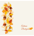 set of decorative Autumn branches vector image vector image