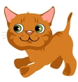 Cartoon playful ginger kitten with green eyes vector image