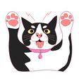 cute black and white cat attack vector image