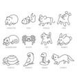 pet shop set types of pets vector image