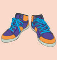 isolated shoes vector image vector image