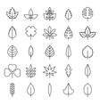 Leaf  flora linear style black contour vector image