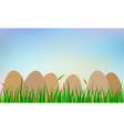easter eggs on grass vector image vector image