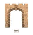 New Gate in Jerusalem vector image