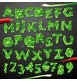 Green leaf lettuce alphabet vector image