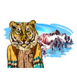 tiger in knitted sweater vector image