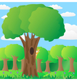 The squirrel on a tree in the forest vector image