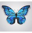 Blue Butterfly Morpho vector image
