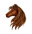 Brown horse head sketch portrait vector image