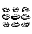 Hand drawn coffee beans set vector image