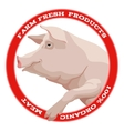 Pig label red vector image