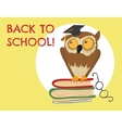 Cute owl sitting on books vector image