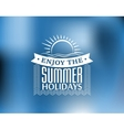 Summer Holidays poster or banner vector image