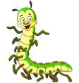 caterpillar millipede vector image