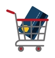 shopping cart online credit card bank vector image
