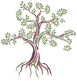 beauty Stylized tree vector image vector image
