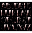 Complete English Alphabet vector image