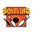 Bowling ball crashing into the pins vector image