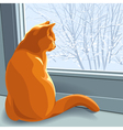cat at the window vector image