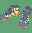 isolated shoes vector image