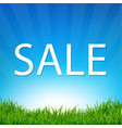 sale poster with grass vector image