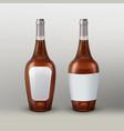 brown bottle vector image