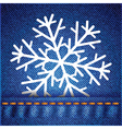 snowflake on jeans texture vector image