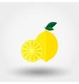 Lemon Flat icon vector image