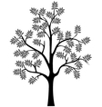 black tree silhouette isolated vector image vector image