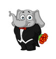 elephantin a tuxedo holding a bouquet of flowers vector image