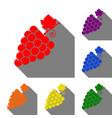 grapes sign set of red orange vector image