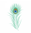 Peacock feather isolated vector image
