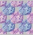 inflorescence hydrangea randomly arranged in vector image