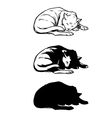 Sketch cat sleeping curled up vector image