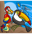 cute birds group cartoon vector image