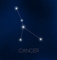 Cancer constellation in night sky vector image