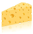 cheese 03 vector image