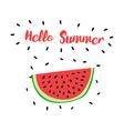 HelloSummer vector image